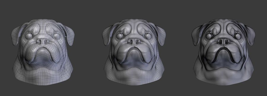head pug royalty-free 3d model - Preview no. 5