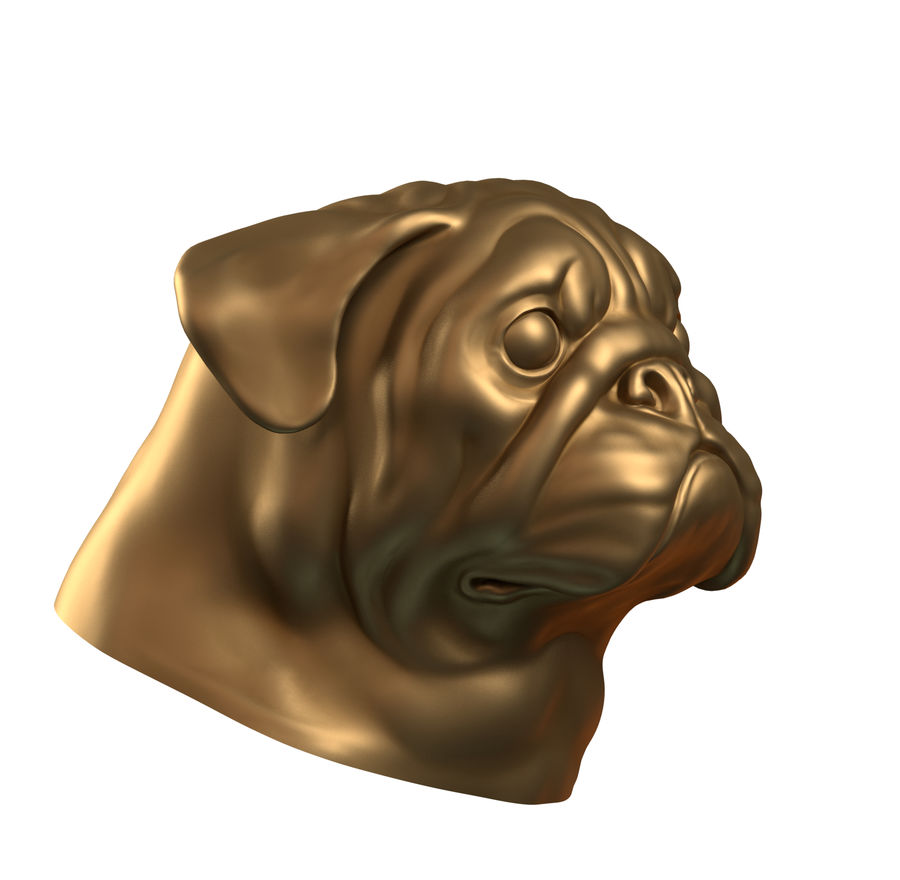 head pug royalty-free 3d model - Preview no. 4