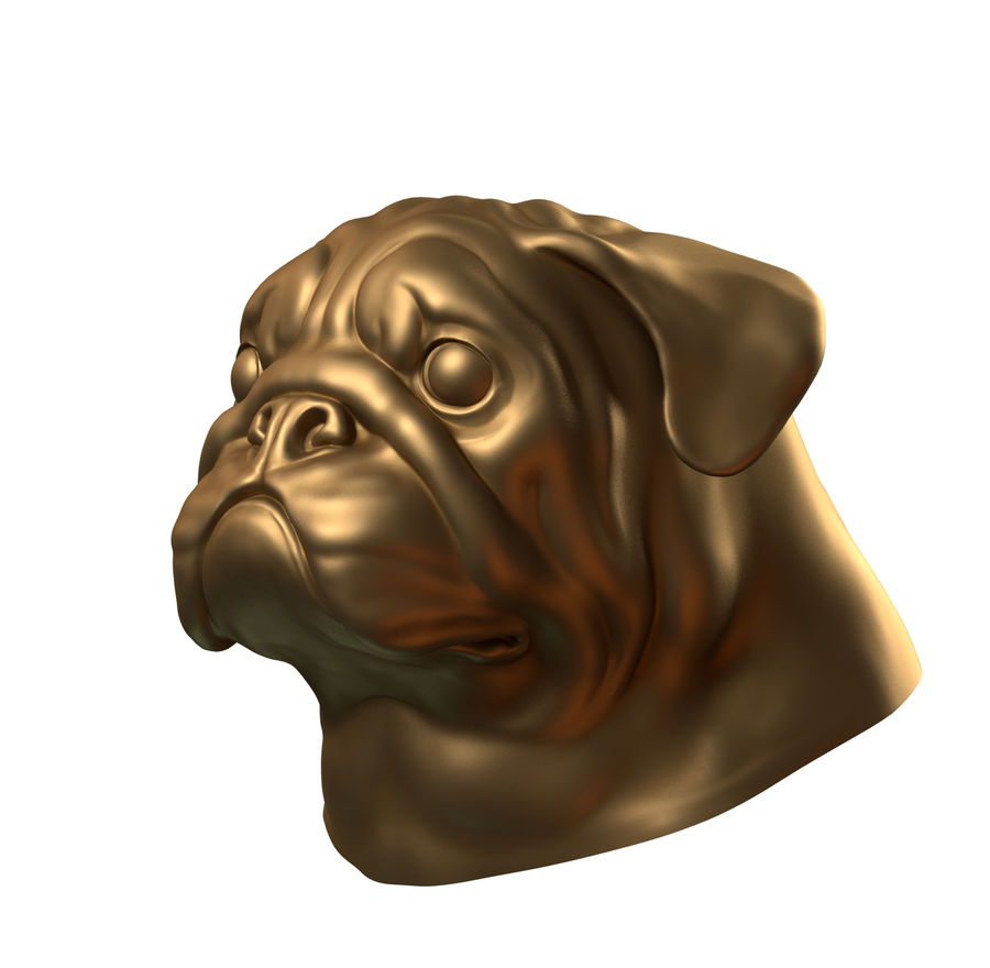 head pug royalty-free 3d model - Preview no. 3