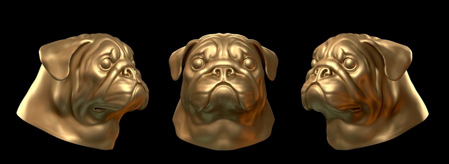 head pug royalty-free 3d model - Preview no. 1