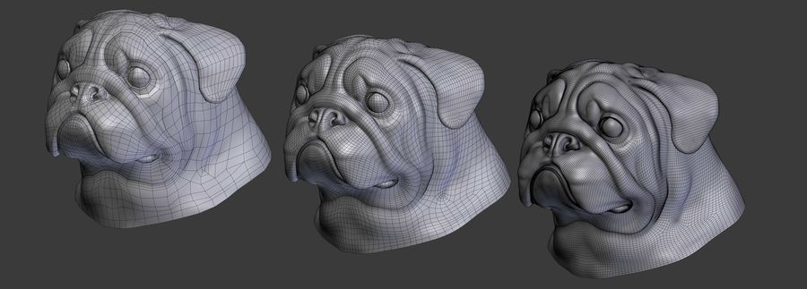 hoofd pug royalty-free 3d model - Preview no. 9