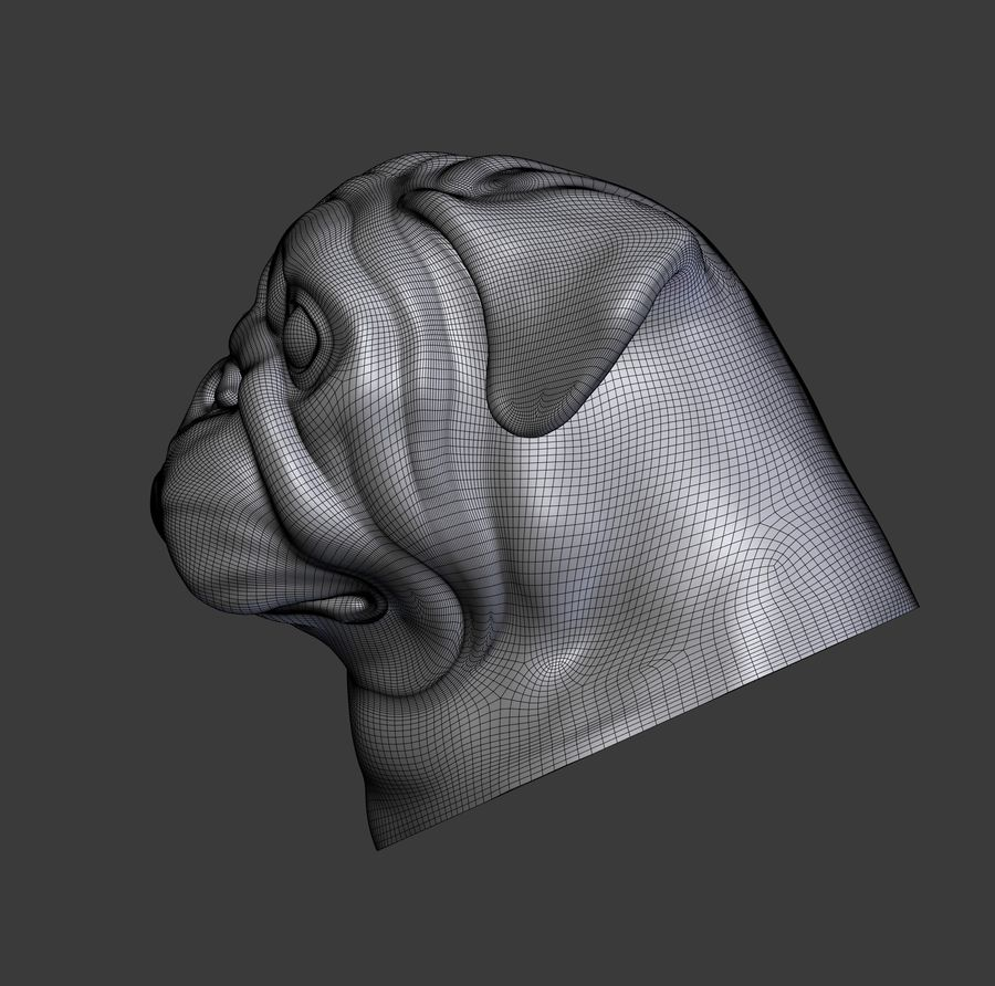 head pug royalty-free 3d model - Preview no. 12