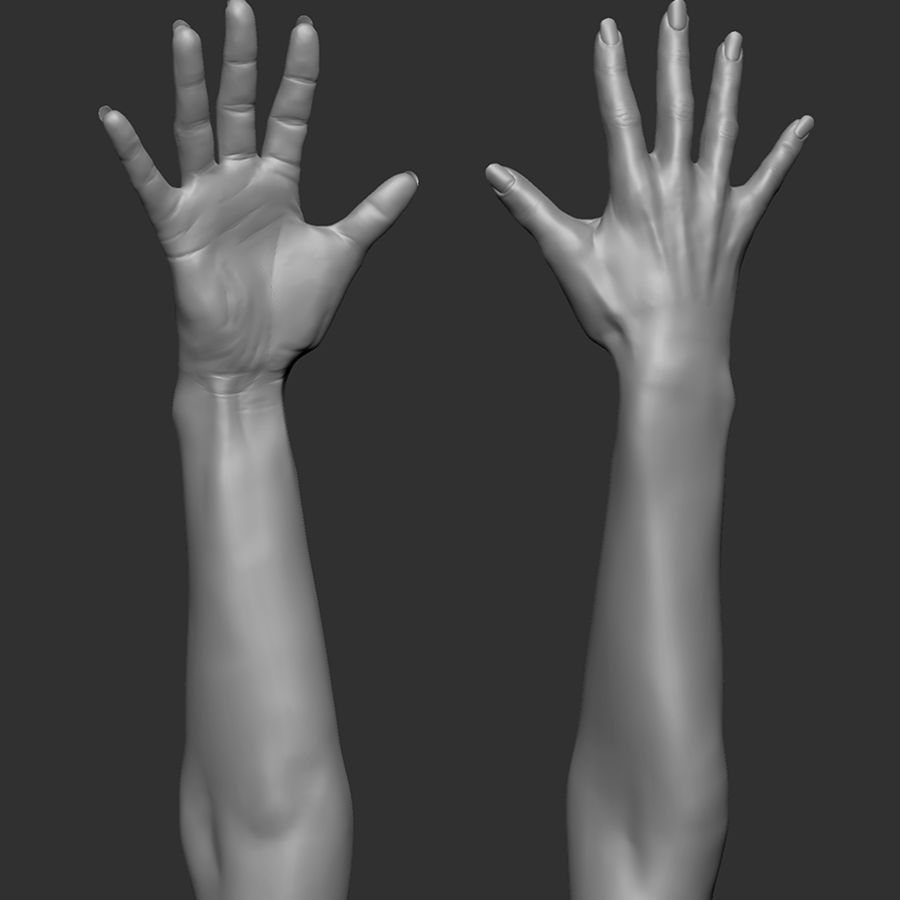 Beauty woman hand royalty-free 3d model - Preview no. 8