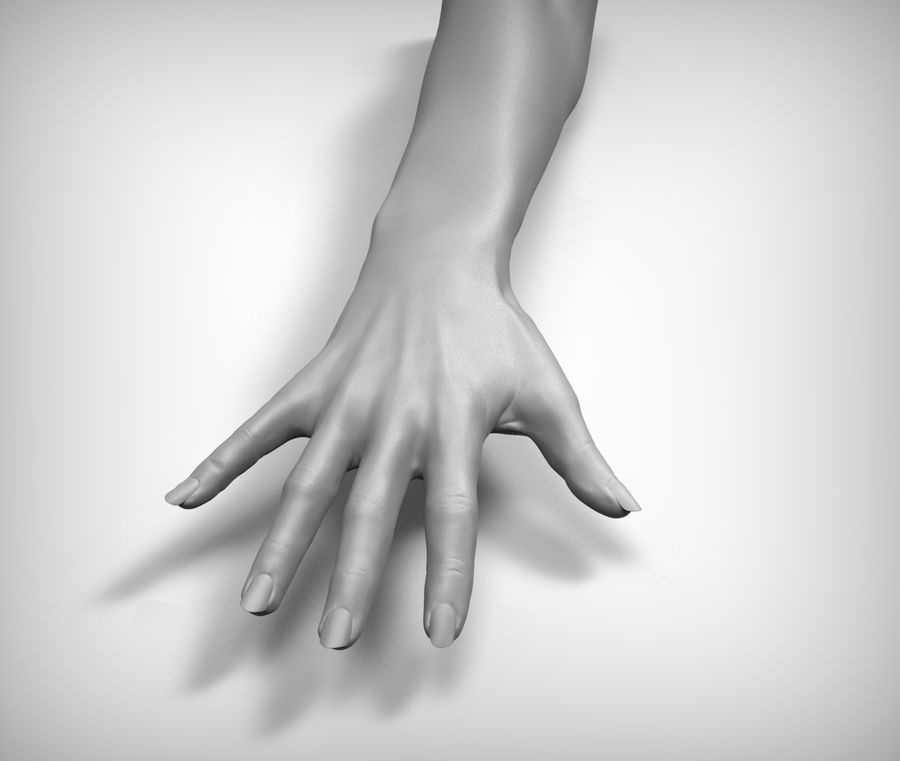Beauty woman hand royalty-free 3d model - Preview no. 6