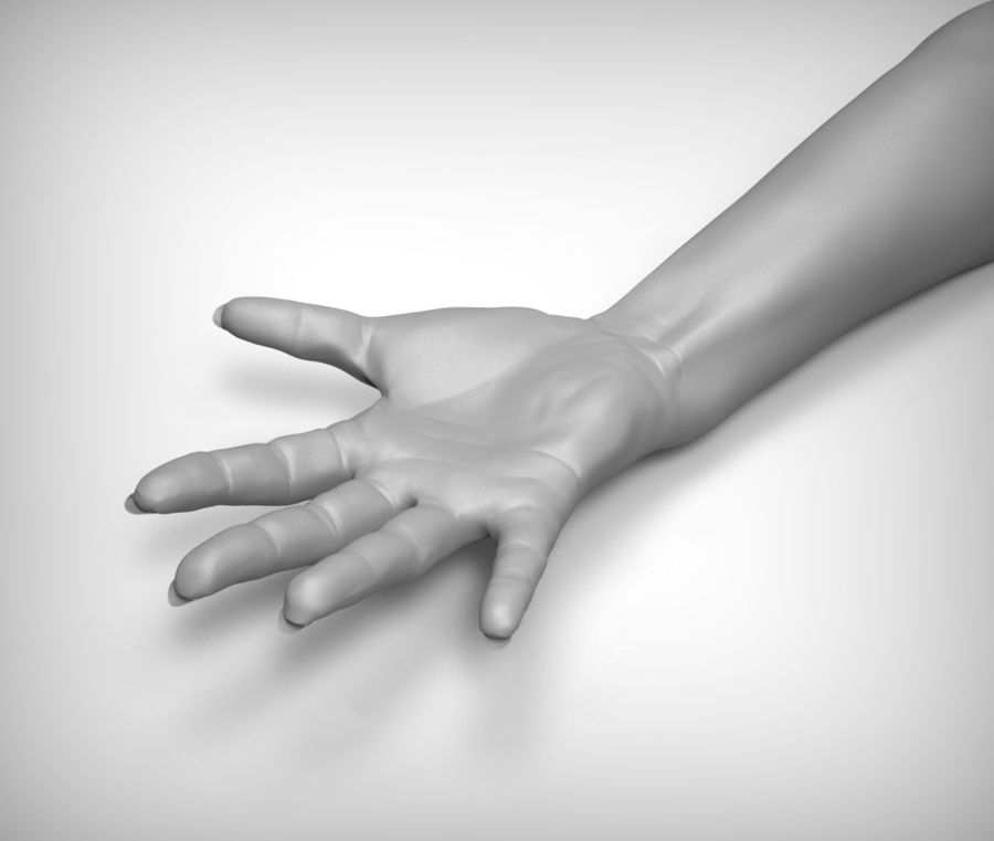 Beauty woman hand royalty-free 3d model - Preview no. 2