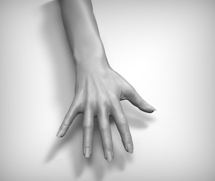 Beauty woman hand royalty-free 3d model - Preview no. 5