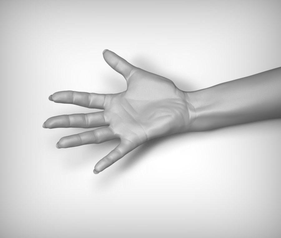 Beauty woman hand royalty-free 3d model - Preview no. 3