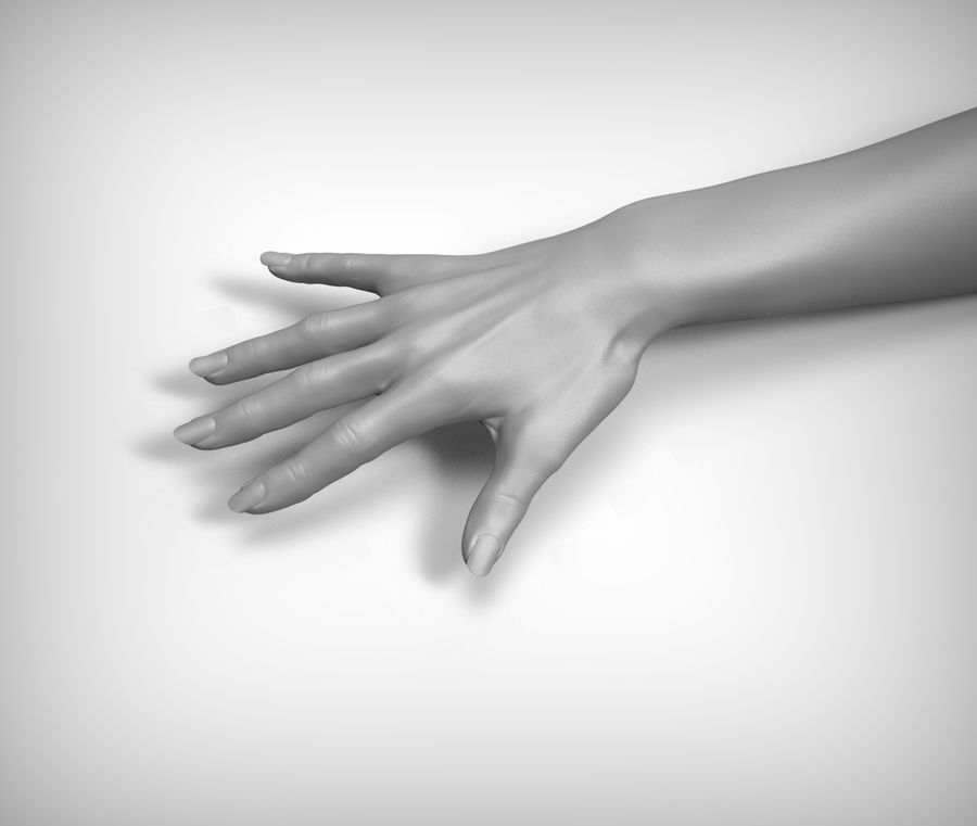 Beauty woman hand royalty-free 3d model - Preview no. 4