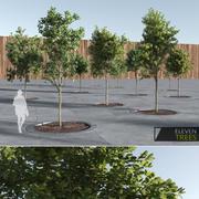 Archviz的十一棵树 3d model