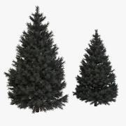 Pine Fir Tree 3d model