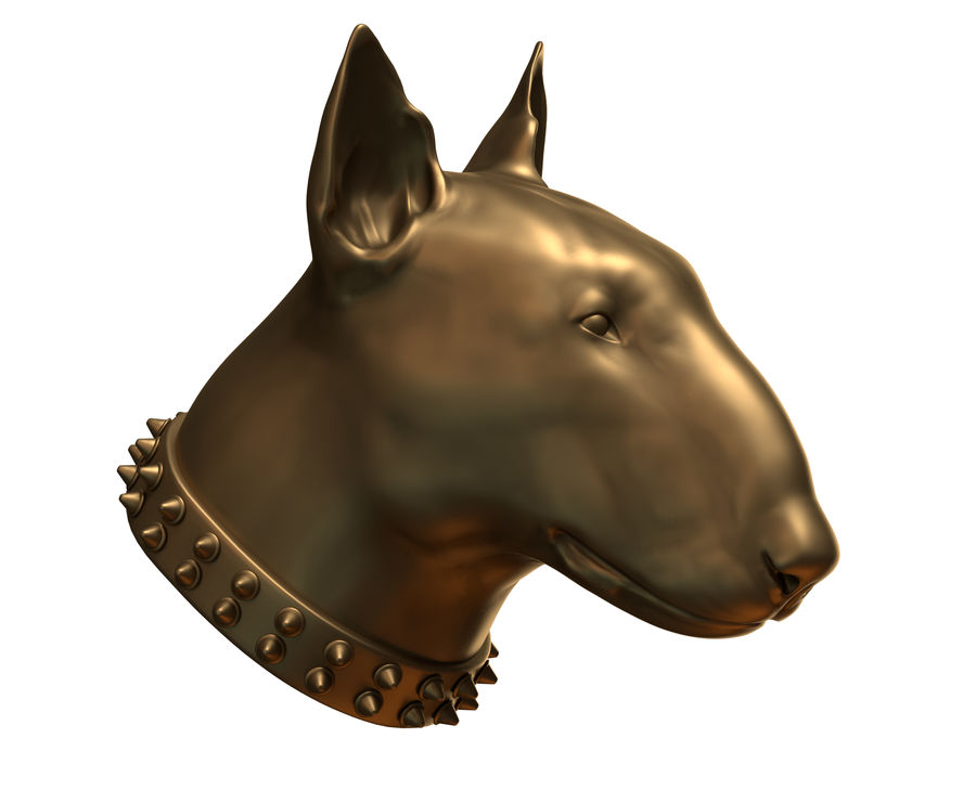 bull terrier head royalty-free 3d model - Preview no. 2