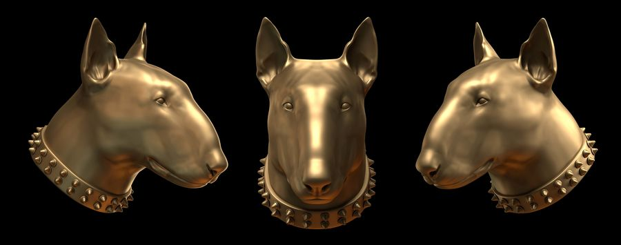 bull terrier head royalty-free 3d model - Preview no. 1