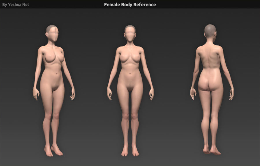Female body reference royalty-free 3d model - Preview no. 1