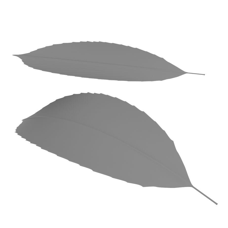 Baum Blatt royalty-free 3d model - Preview no. 10