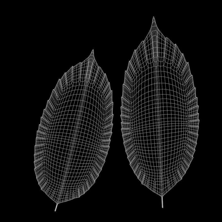 Baum Blatt royalty-free 3d model - Preview no. 12