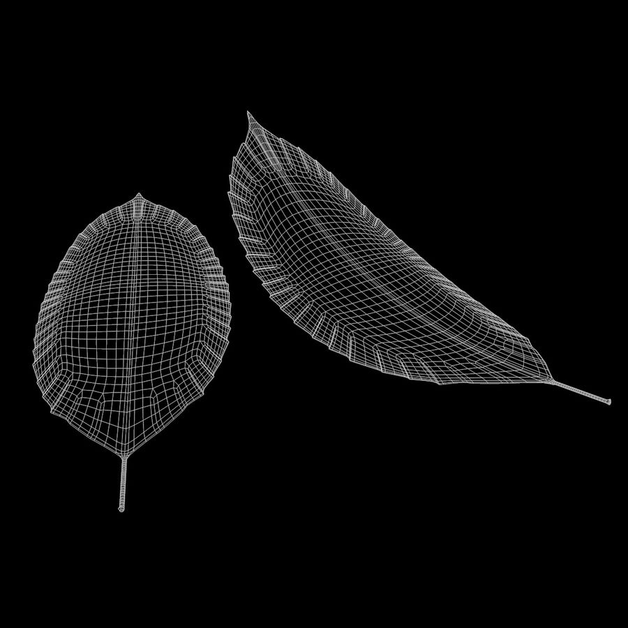 Baum Blatt royalty-free 3d model - Preview no. 11