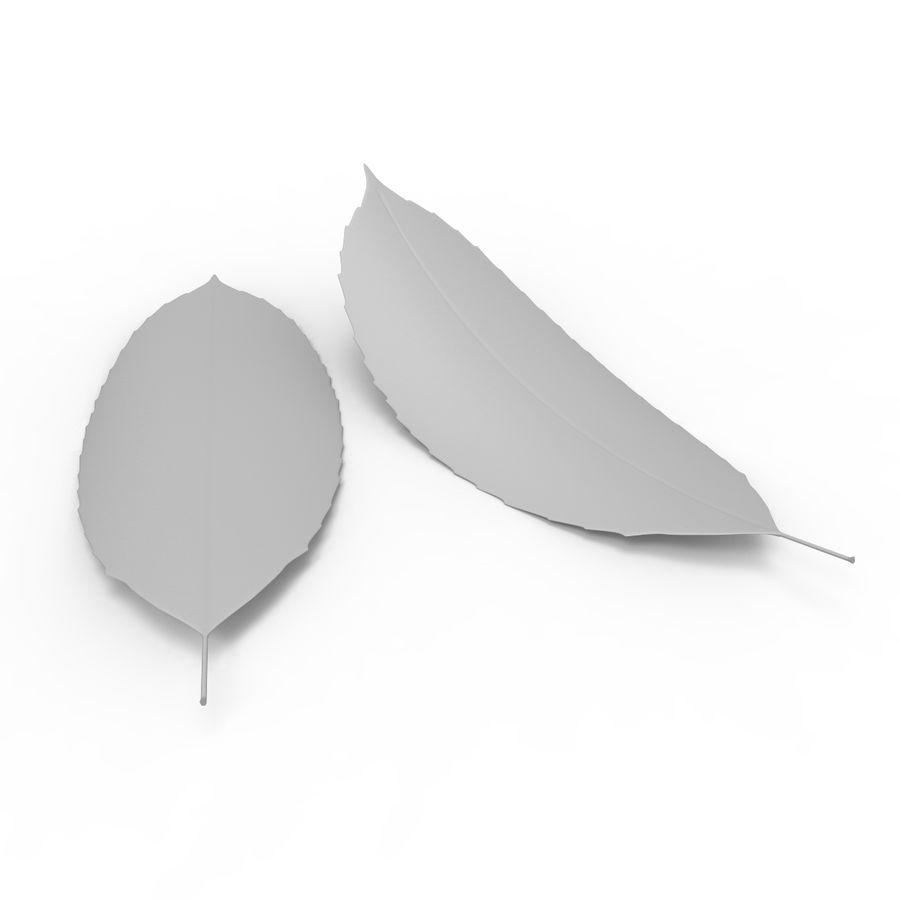 Baum Blatt royalty-free 3d model - Preview no. 8