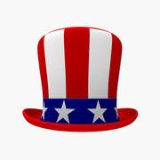 USA Hat 3d model