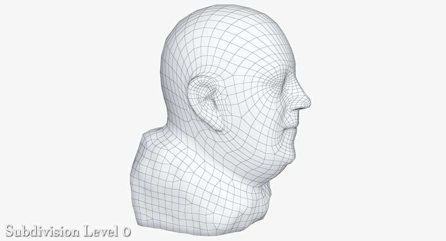 Skinny Head Bust royalty-free 3d model - Preview no. 26