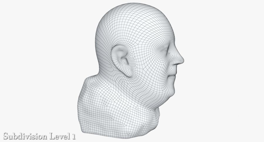 Skinny Head Bust royalty-free 3d model - Preview no. 27