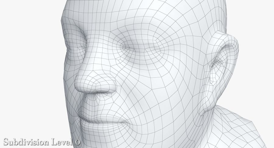 Skinny Head Bust royalty-free 3d model - Preview no. 30