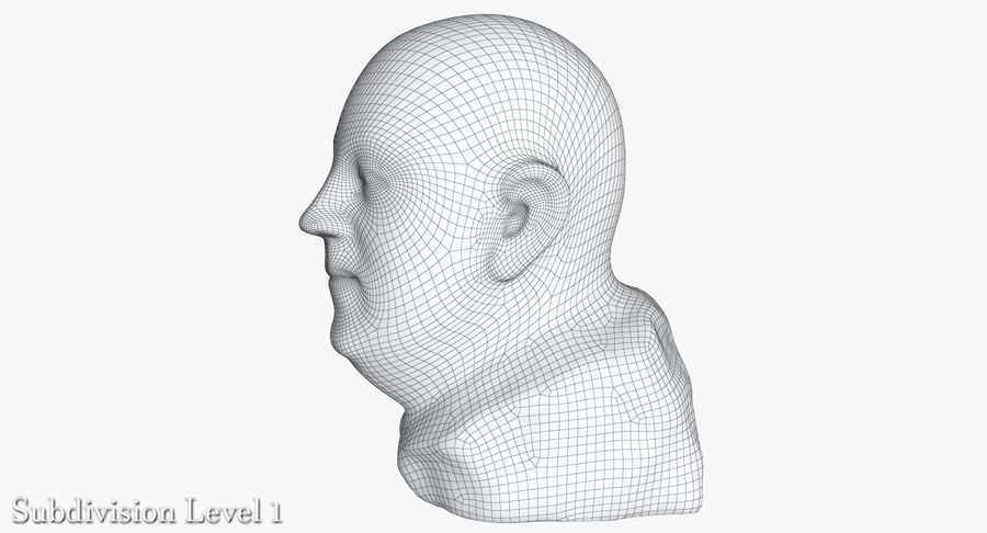 Skinny Head Bust royalty-free 3d model - Preview no. 23