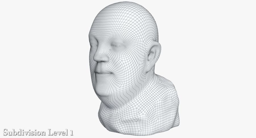 Skinny Head Bust royalty-free 3d model - Preview no. 19
