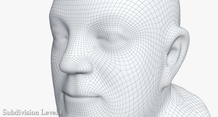 Skinny Head Bust royalty-free 3d model - Preview no. 31