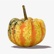 Carnival Squash Pumpkin 3d model