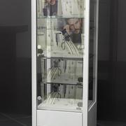 Vitrine 3d model