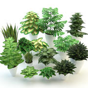 Waldblumen und Pflanzen gesetzt 3d model