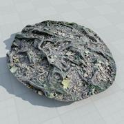 korzenie drzew r-scan 001 3d model