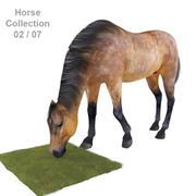 Realistisch paard 02 3d model