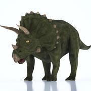 Triceratops Dinosaurier 3d model