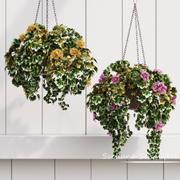 观赏花盆 3d model