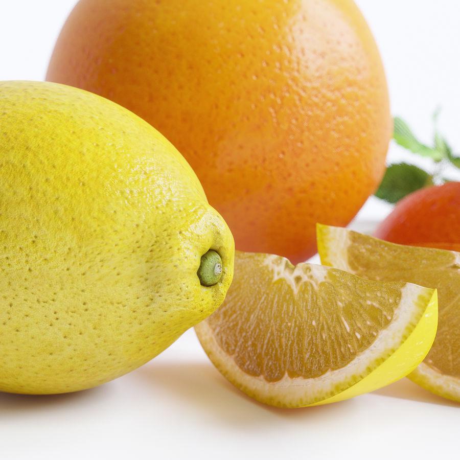 Citrus royalty-free 3d model - Preview no. 3
