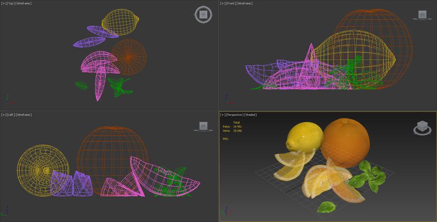 Citrus royalty-free 3d model - Preview no. 8