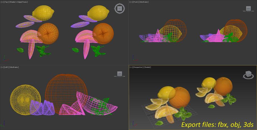 Citrus royalty-free 3d model - Preview no. 10