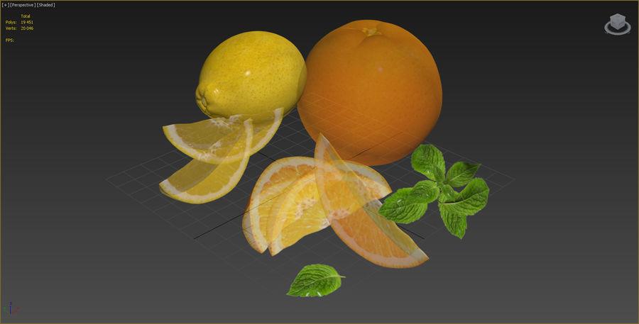 Citrus royalty-free 3d model - Preview no. 9