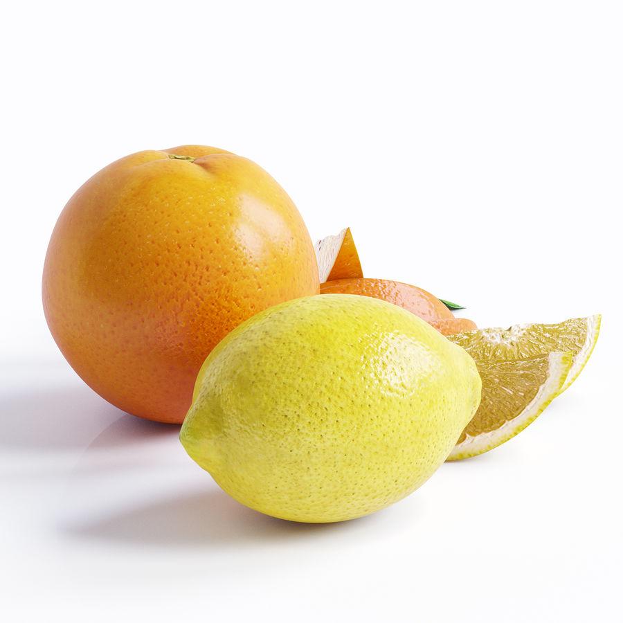 Citrus royalty-free 3d model - Preview no. 2