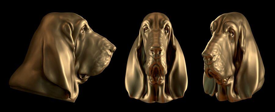 köpek kafası koleksiyonu royalty-free 3d model - Preview no. 32