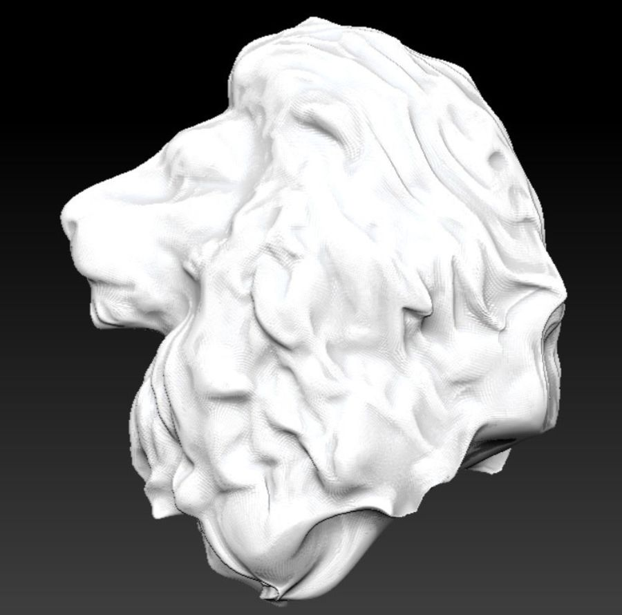 king Lion head bust royalty-free 3d model - Preview no. 4
