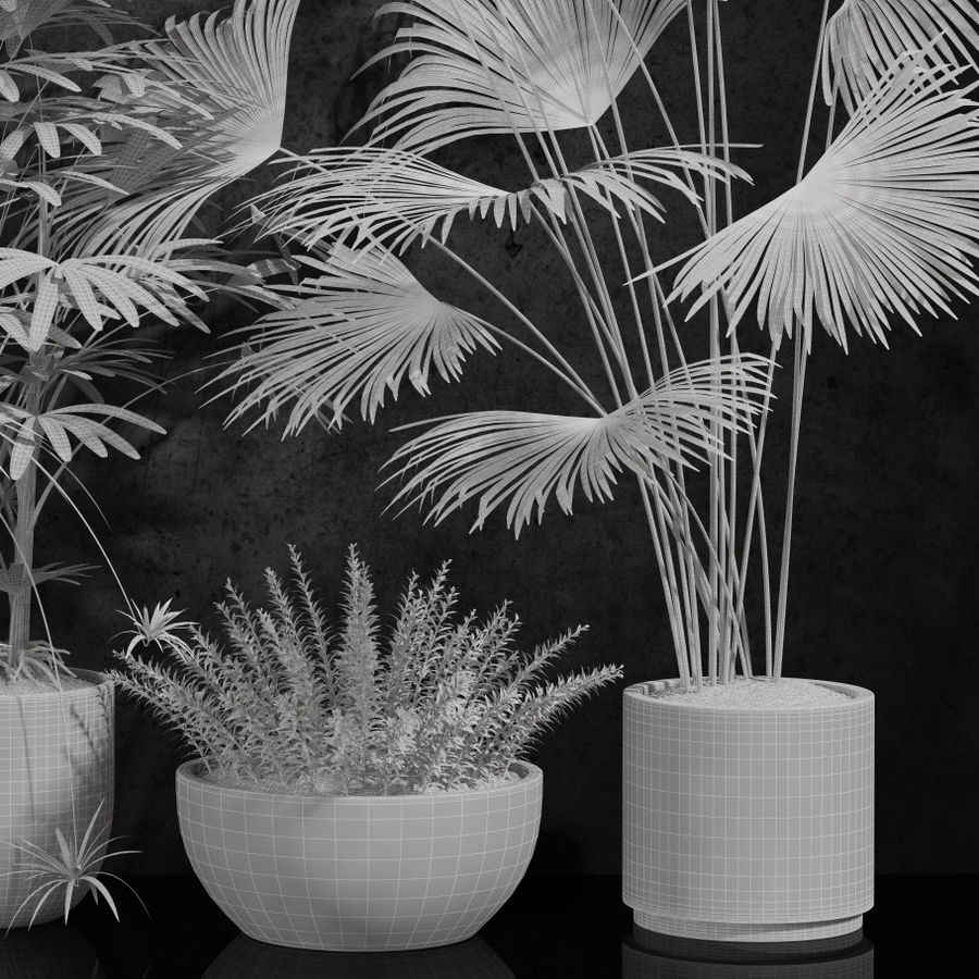 room plants royalty-free 3d model - Preview no. 6