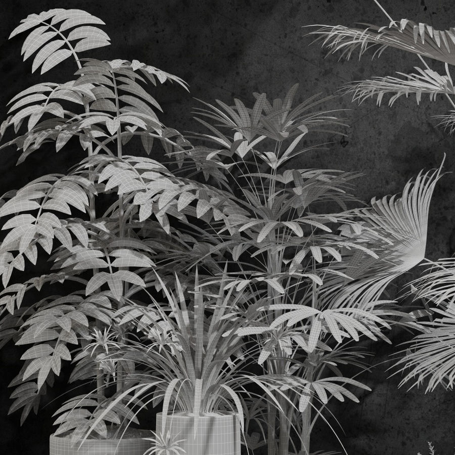 room plants royalty-free 3d model - Preview no. 5