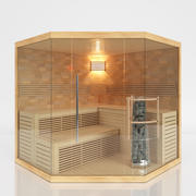 Sauna SR1A010 Wellness 3d model