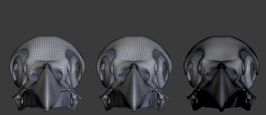 Raven skalle royalty-free 3d model - Preview no. 5