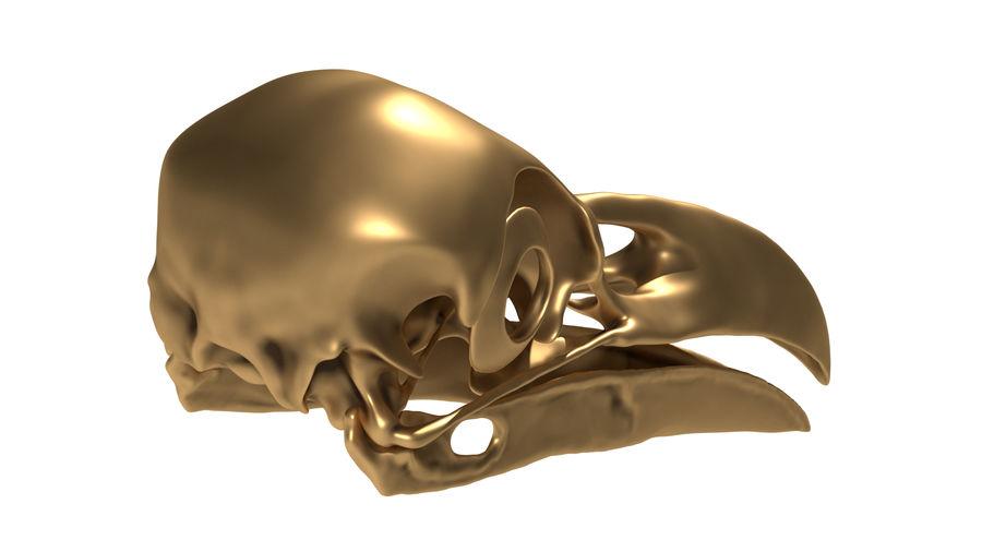 Raven skalle royalty-free 3d model - Preview no. 4