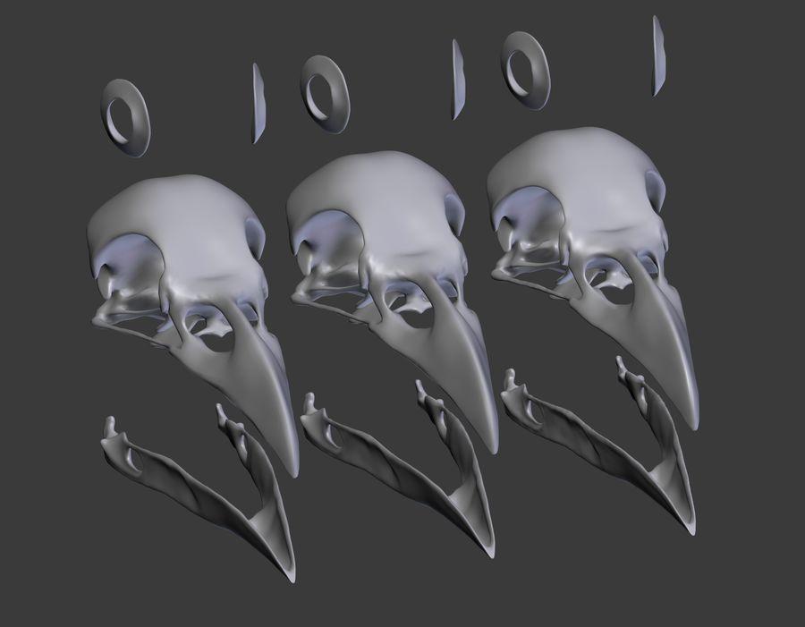 Raven skalle royalty-free 3d model - Preview no. 14