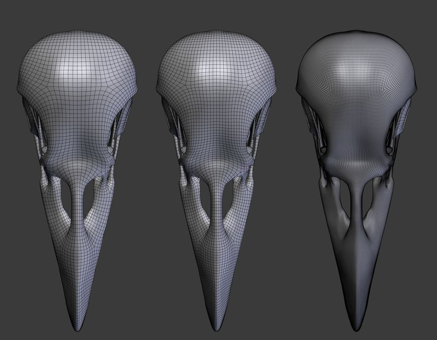 Raven skalle royalty-free 3d model - Preview no. 9