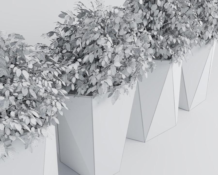 Plantas para interior y exterior 2 royalty-free modelo 3d - Preview no. 9